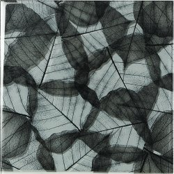 Studio Glass Crystal Glass Winter Glossy  Tile